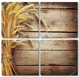 Колосья пшеницы на деревянный стол. Концепция сбора урожая