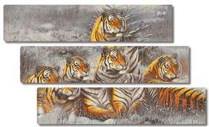 Прайд тигров