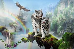 Сказочный мир и белые тигры