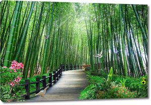 Бамбуковая тропа