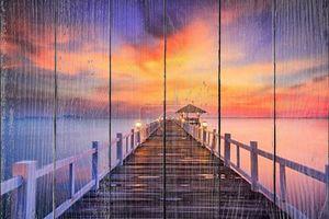 лесистые моста в порту между восход.