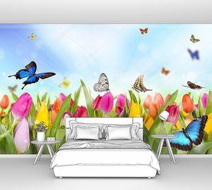 Тюльпаны на поле с бабочками