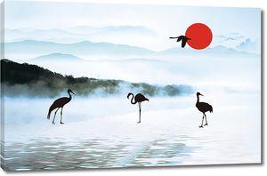 Силуэты птиц на закате