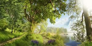 Солнечный день на озере в лесу