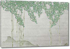 Тростинки бамбука
