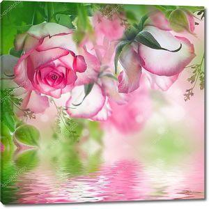 Бутоны бело-розовых роз над водой