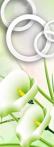 Зеленые каллы с кольцами