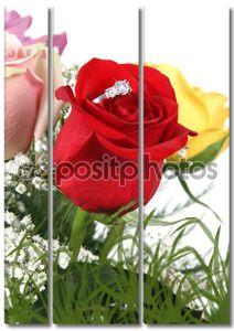 Кольцо в Роуз