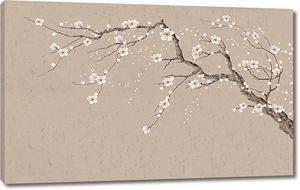 Ветвь сакуры