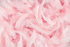 Розовые перья