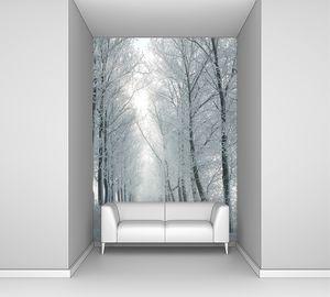 Зимняя дорога освещена утренним солнцем