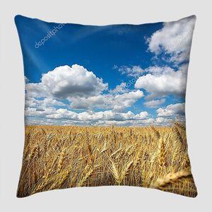 Низкое небо над полем пшеницы