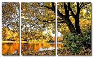 Осенние деревья на реке