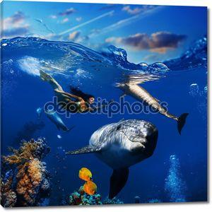 Красочные подводные коралловые сцены с дельфинами рыбы и красивые