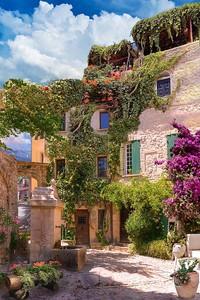 Прекрасный дом с цветущими растениями на нем