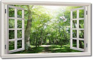 Тропа в лесу в открытом окне