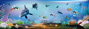 Мир подводных обитателей