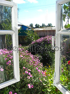 Окно в саду