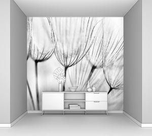 Черно-белый абстрактный цветок одуванчика