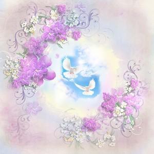 Два белых голубя на небе