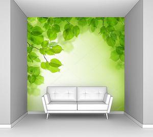 Зеленые листья поверху