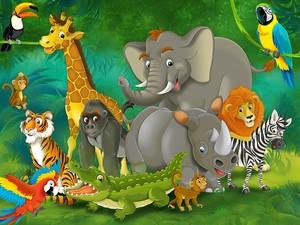 Животные и птицы в джунглях