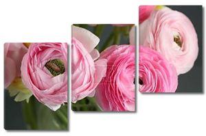 Многоцветная розовый Лютик, лютик в стеклянной вазе на сером фоне