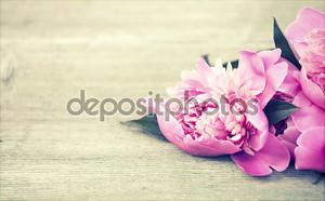 Розовые пионы на деревянных фоне