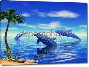Играющих дельфинов