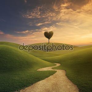 Сердце дерева на холме
