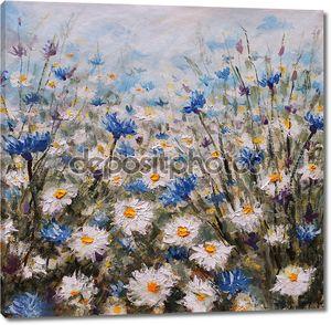 Цветы. Поляна Васильки и ромашки. Летние цветы.