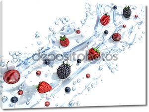 Свежие ягоды на белом фоне