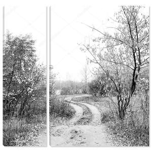 Черный и белый Осенний пейзаж с графическим деревьями.