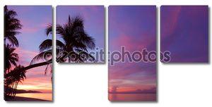Панорама Тропический закат с silhoette дерево пальмы на пляже
