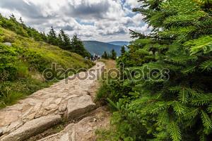 Тропа горы в национальном парке Крконоше