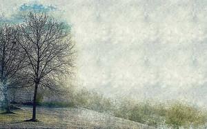 Дерево на опушке