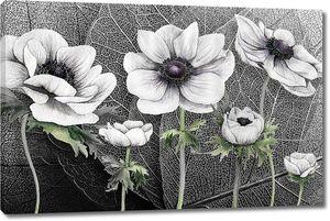 Композиция цветов на макро листке