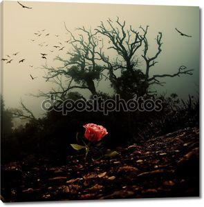 Красная роза расти через почву против жуткий дерево