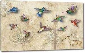 Стая колибри