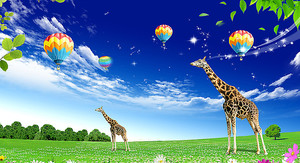 Воздушные шары над жирафами