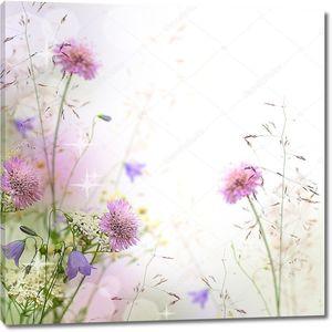 Пастельных тонов полевые цветы