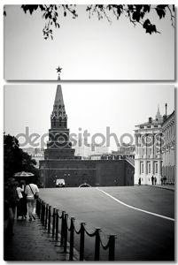 Черно-белый вид на Московский Кремль