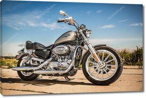 Harley-davidson - sportster 883 низкий