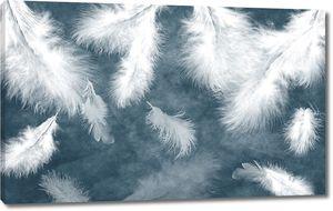 Пушистые перья на темно-сером фоне
