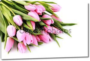 Букет прекрасные тюльпаны розовые на белом фоне - цветы