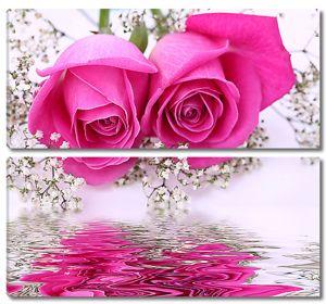 Два розовых бутона над водой