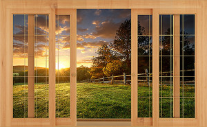 Луга через деревянное окно