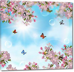 Небо сквозь ветки вишни