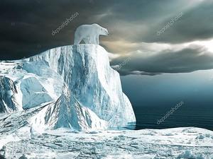 Белый медведь на вершине айсберга