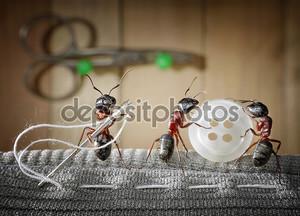 Портной ant и команда муравьев, пошив одежды
